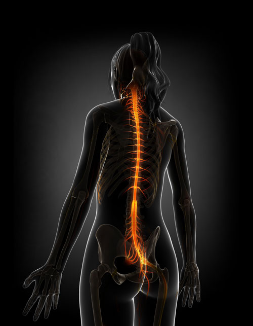 DEGENERATIVE DISC DISEASE TREATMENT