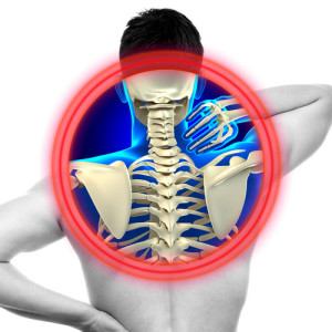 anterior cervical discectomy fusion new york